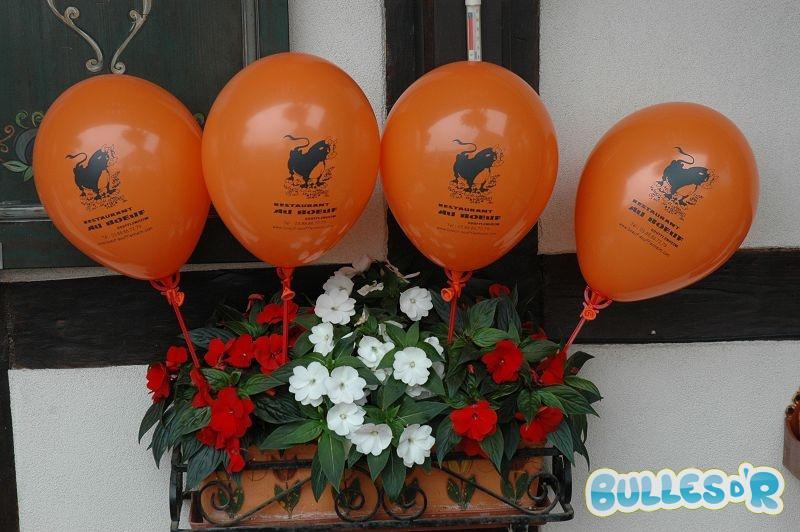 Bulles_d_R_L_Decoration_ballons_inauguration_terrasse_Restaurant_au_b__uf_soufflenheim__4_-386