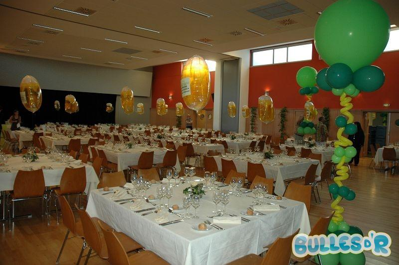 Bulles_d_R_L_univers_du_ballon_Decoration_ballons_Congres__Cophoudal__4_-382