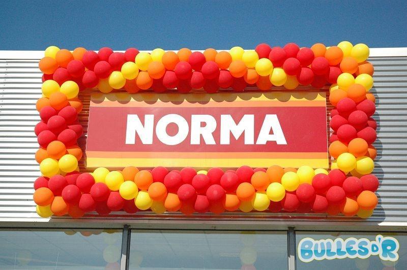 Bulles_d_R_L_univers_du_ballon_Decoration_ballons_Ouverture_Norma__1_-336