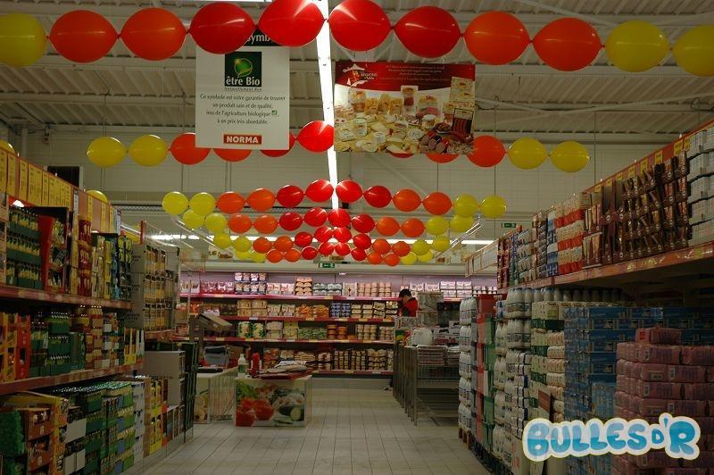 Bullesdr d coration pour professionnels en ballons norma for Decoration professionnelle