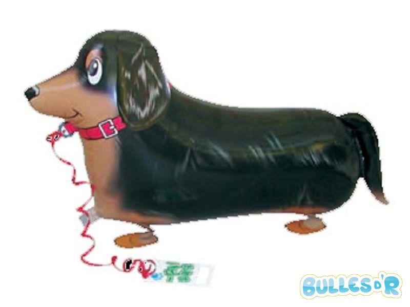 Bulles_d_R_L_univers_du_ballon_animaux_qui_marchent_basset-747